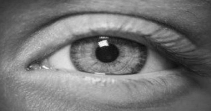 چشم انسان چگونه تکامل یافت؟
