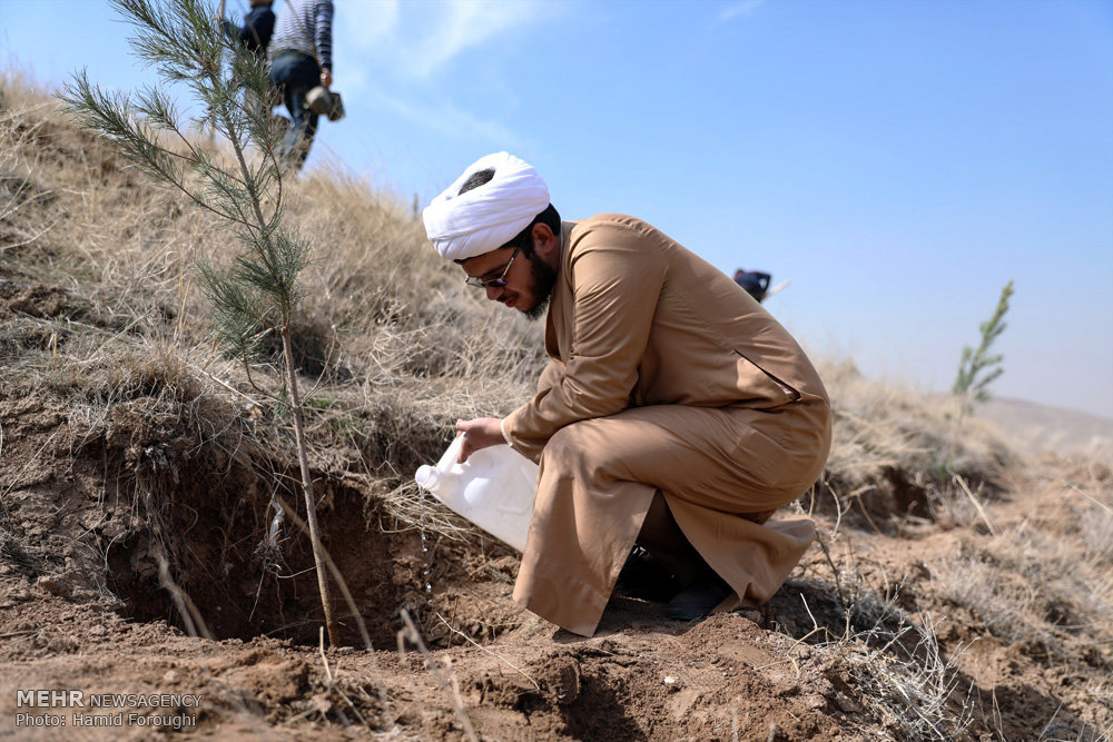 وقتی درختی کاشتی، مقداری از برگ هاشو در دست بگیر و بگو: خدایا! این درخت کاری رو برای ما مبارک کن و در آن، سلامت و نعمت رو برای ما روزی قرار بده
