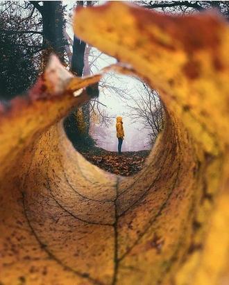 ایستاده در پاییز