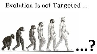 Evolution Is Not Targeted