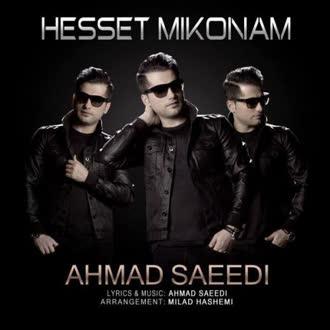 احمد سعیدی : حست میکنم