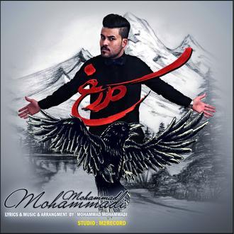دانلود آهنگ جدید محمد محمدی به نام گریه کلاغ