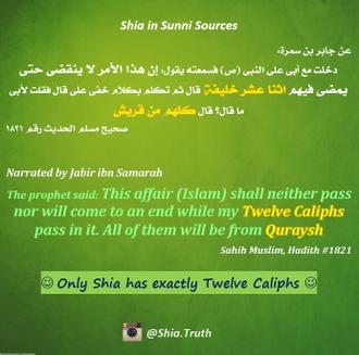 Shia in Sunni Sources