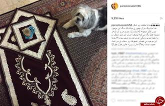 ماجرای عکس سجاده پرستو صالحی در کنار سگ
