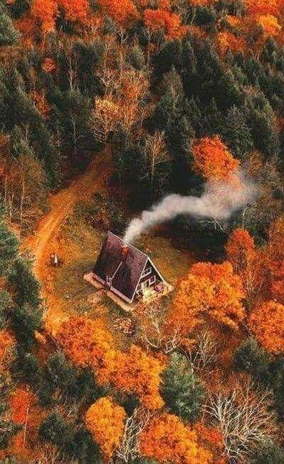 تصویر طبیعت پاییزی برای صفحه موبایل با کیفیت عالی
