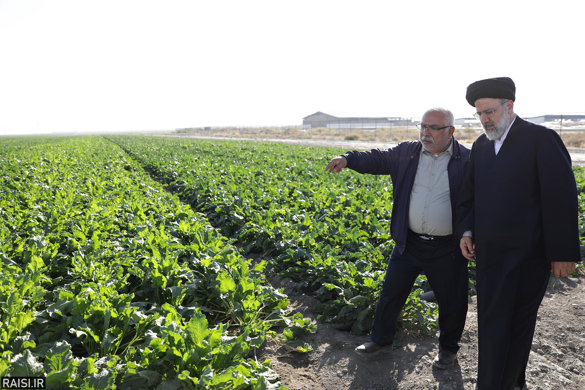 حجتالاسلاموالمسلمین رئیسی: فناوریهای نوین کشاورزی برای کشور اهمیت راهبردی دارند