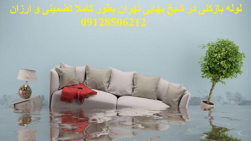 لوله بازکنی در شیخ بهایی تهران بطور کاملا تضمینی و ارزان