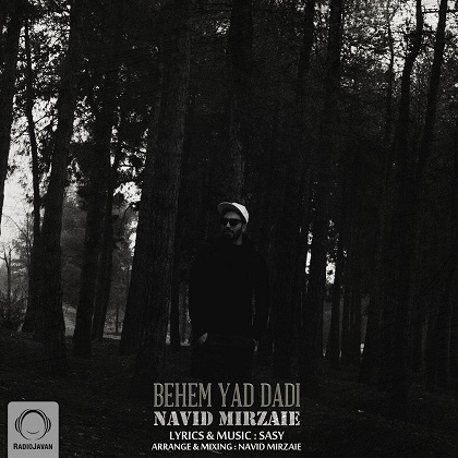 نوید میرزایی, Navid Mirzaei