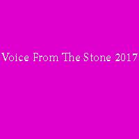 زیرنویس دوبله فارسی فیلم Voice From The Stone 2017 1