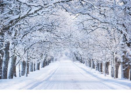 متن ادبی درباره یک صبح سرد و برفی زمستانی پایه دوازدهم صفحه 38