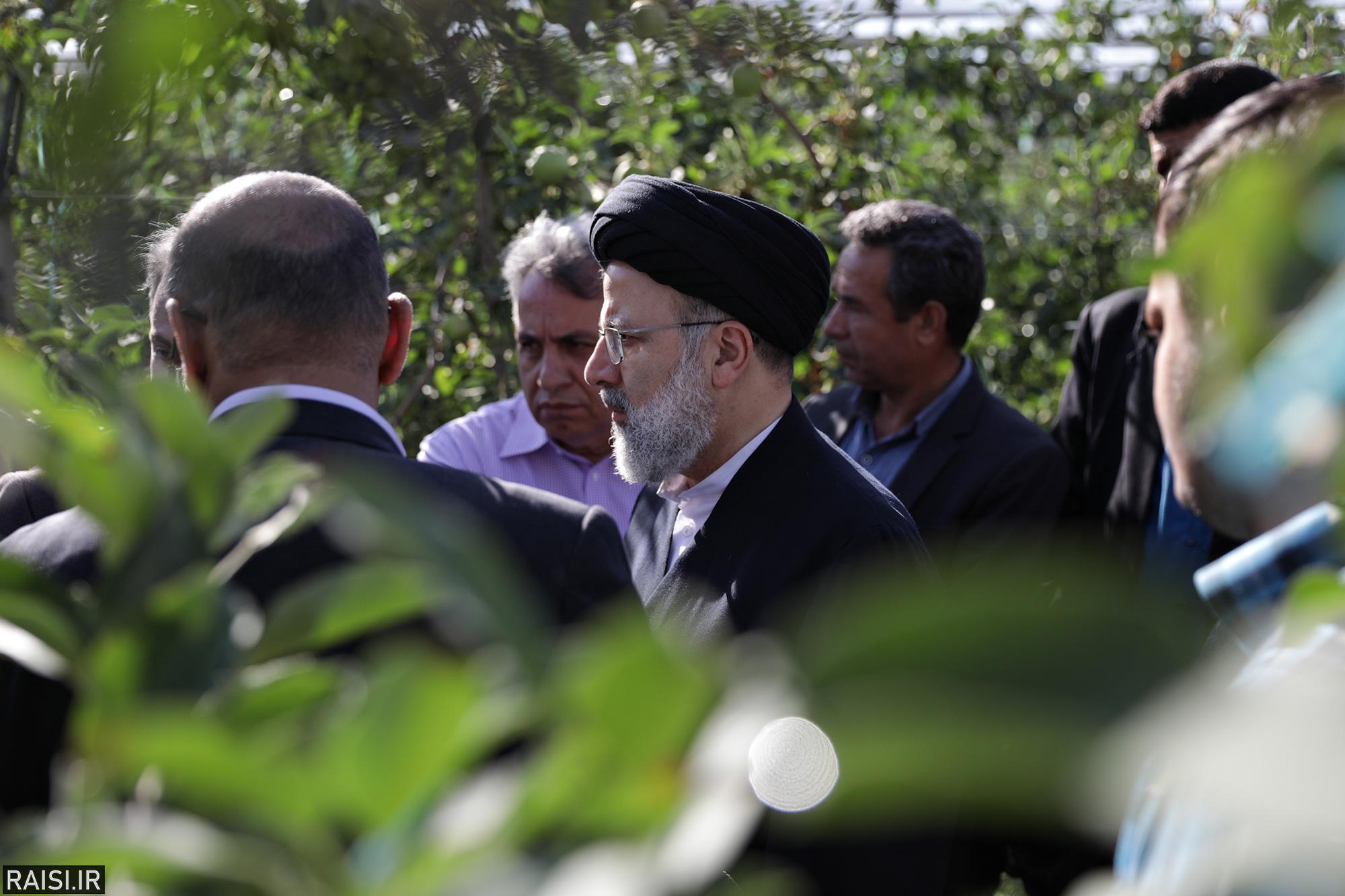 گزارش تصویری بازدید حجت الاسلام رئیسی ازموسسه کشت و صنعت مزرعه نمونه آستان قدس رضوی