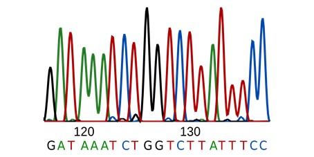 مروری بر توالی یابی DNA دی ان ای (نسل دوم)