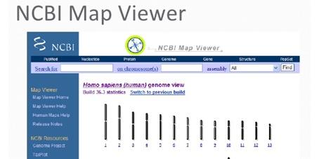 راهنمای استفاده از نرم افزار MapViewer