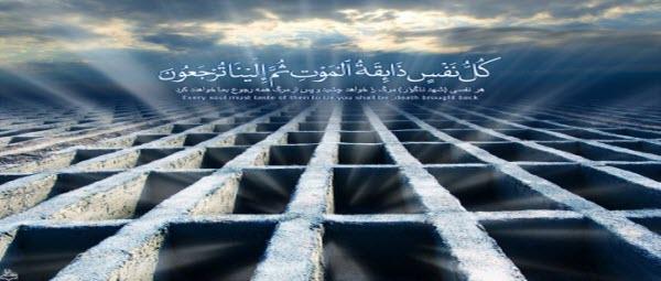 کتابخانه آیت الله مرعشی نجفی بزرگترین باقیات الصالحات آن مرحوم است