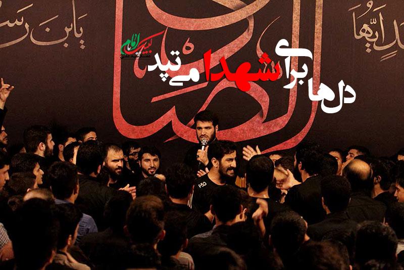 دل ها برای شهدا می تپد-عمار سید علی