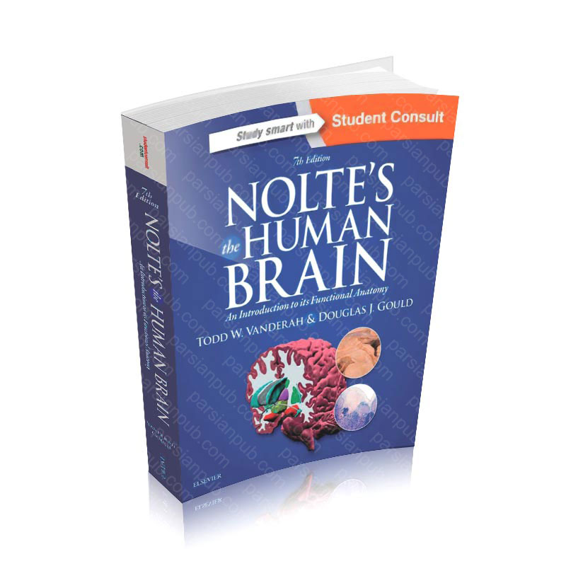 Nolte's The Human Brain: An Introduction to its Functional Anatomy, 7e 7th Edition