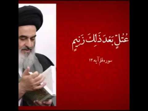 پاسخ محکم سید محمد شیرازی به شبهه برادرش سید صادق شیرازی در مورد جواز سب و فحاشی در قرآن