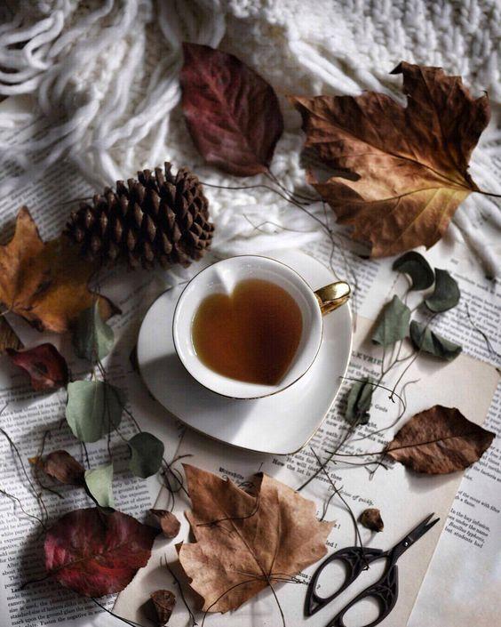عکس فنجان چای در طبیعت پاییز برای استوری اینستاگرام