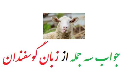 جواب سه جمله از زبان گوسفندان