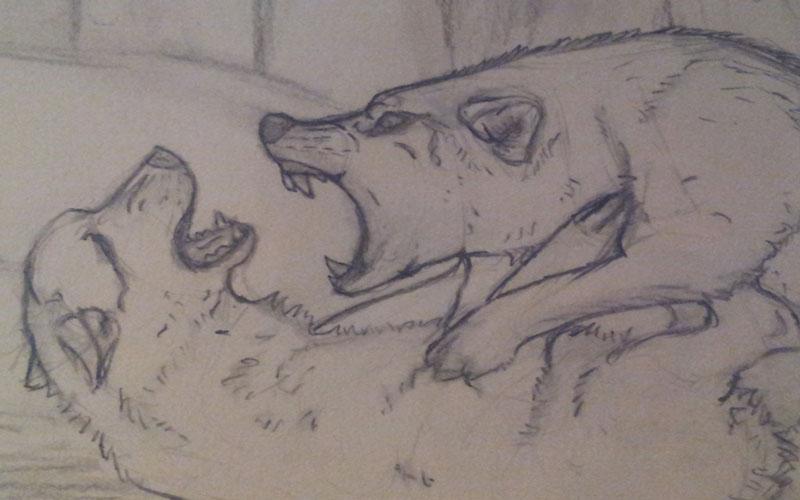 مبارزه دو گرگ - داستان آموزنده