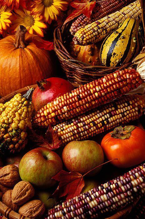 تصویز زیبا از میوه های پاییز برای صفحه موبایل