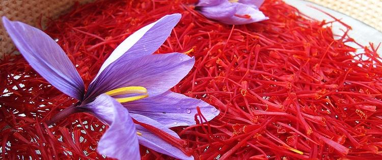 روشی آسان برای تشخیص زعفران اصل و تقلبی