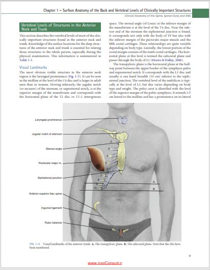clinical anatomy of the spine spinal cord and ans pdf