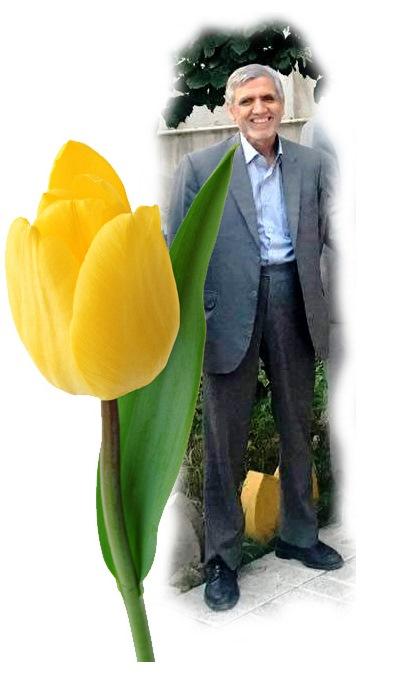 محمدحسین توکلی کارشک