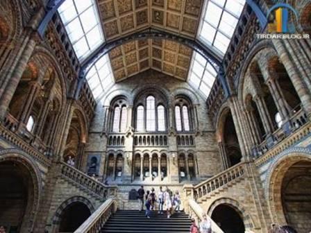 ملاقات نزدیک با دایناسورها در موزه تاریخ طبیعی لندن