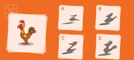کدام سایه با تصویر در سمت چپ مطابقت دارد؟