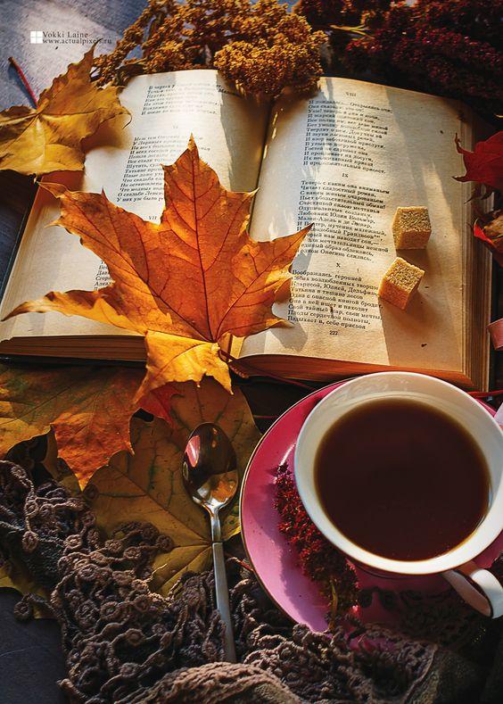 عکس پروفایل فنجان چای در پاییز با کیفیت عالی