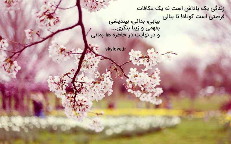 متن زیبا و یک شعر زیبا درباره زندگی
