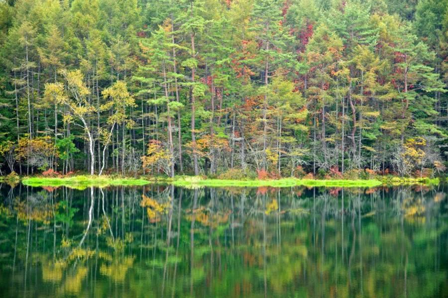 تصاویر زیبا از طبیعت فصل پاییز برای صفحه کامپیوتر