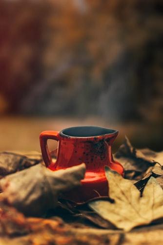عکس فنجان چای در برگ های پاییزی برای استوری اینستاگرام
