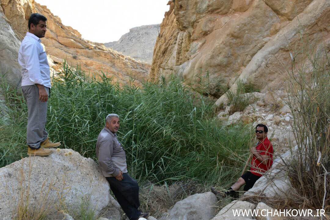 http://bayanbox.ir/view/4615818505637511313/Paksazi-Cheshmeh-Aab-KharzahreDan-9.jpg