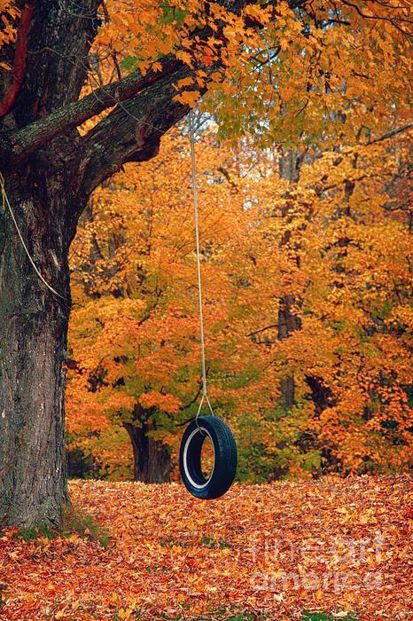 عکس پاییز زیبا برای صفحه موبایل