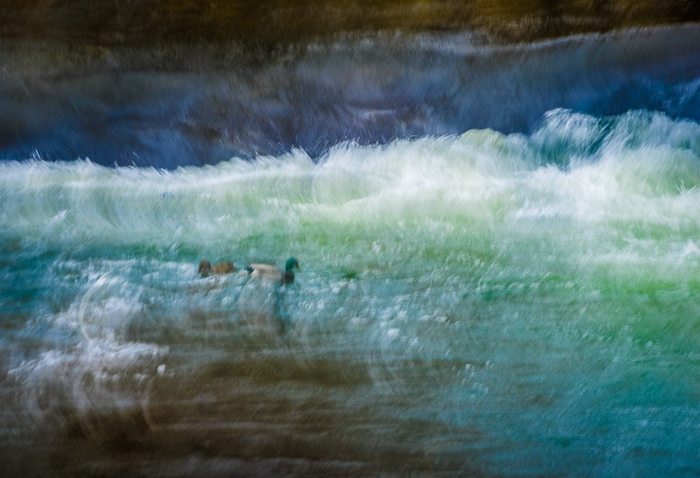 Weathering The Storm Together by Maz Mahjoobi | Abstract Photography