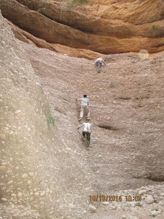 کول خرسان گروه کهپیمایی رویش دزفول