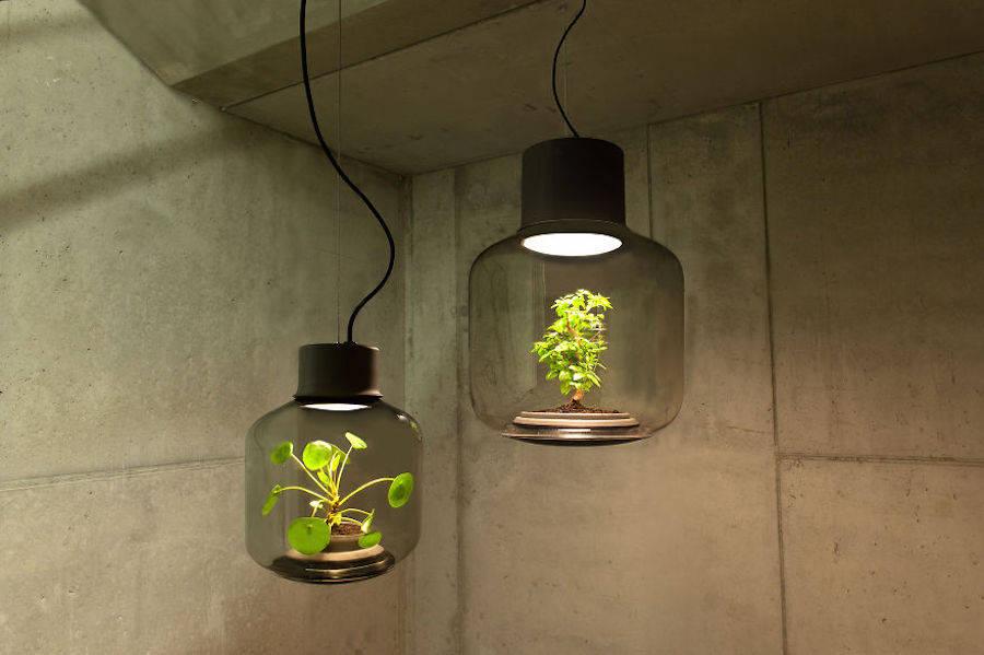 http://bayanbox.ir/view/5347532803382421270/magicminilampstogrowplantswithoutwater-0-900x599.jpg