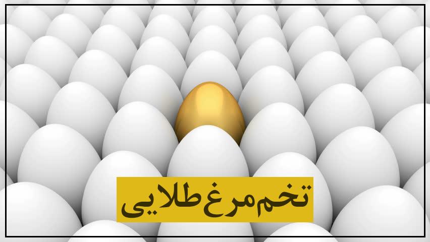 تخم مرغ طلایی؛ خرید مرغ تخمگذار برای اشتغال خانوادههای نیازمند روستایی خوزستان