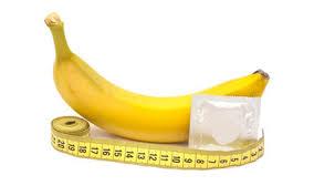 حقایقی عجیب درباره سایز آلت تناسلی مردان