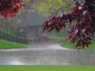 بزرگ ترین آرشیو متن و عکس راجب باران+اس ام اس و عکس متن دار بارانی