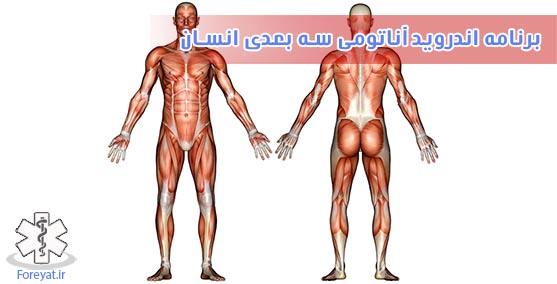 برنامه اندروید اناتومی سه بعدی بدن انسان