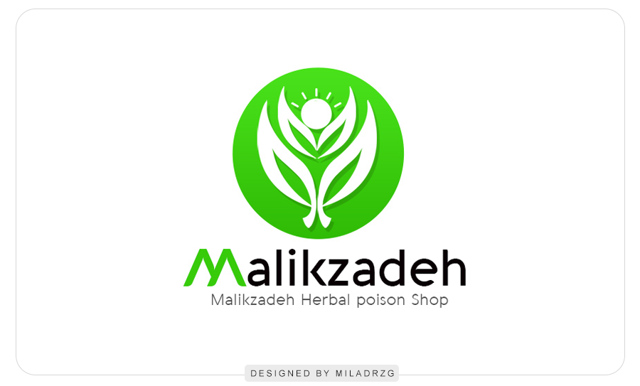 Sample of Malikzadeh Engineering Services Logo