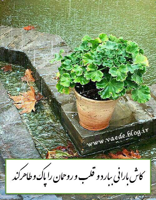 باران پاک کننده