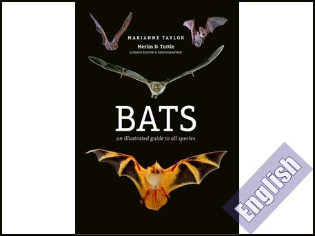 کتاب راهنمای تصویری تمام گونه های خفاش  Bats an illustrated guide to all species