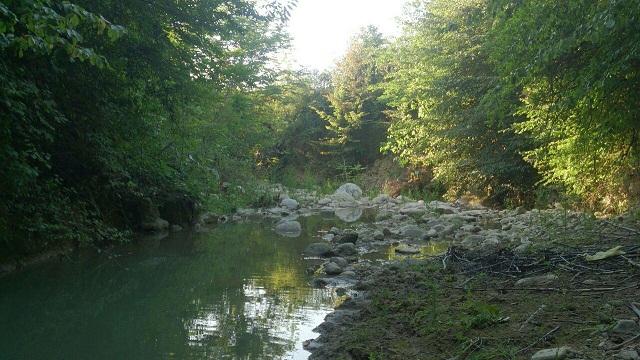 رودخانۀ تیرنگ گردی