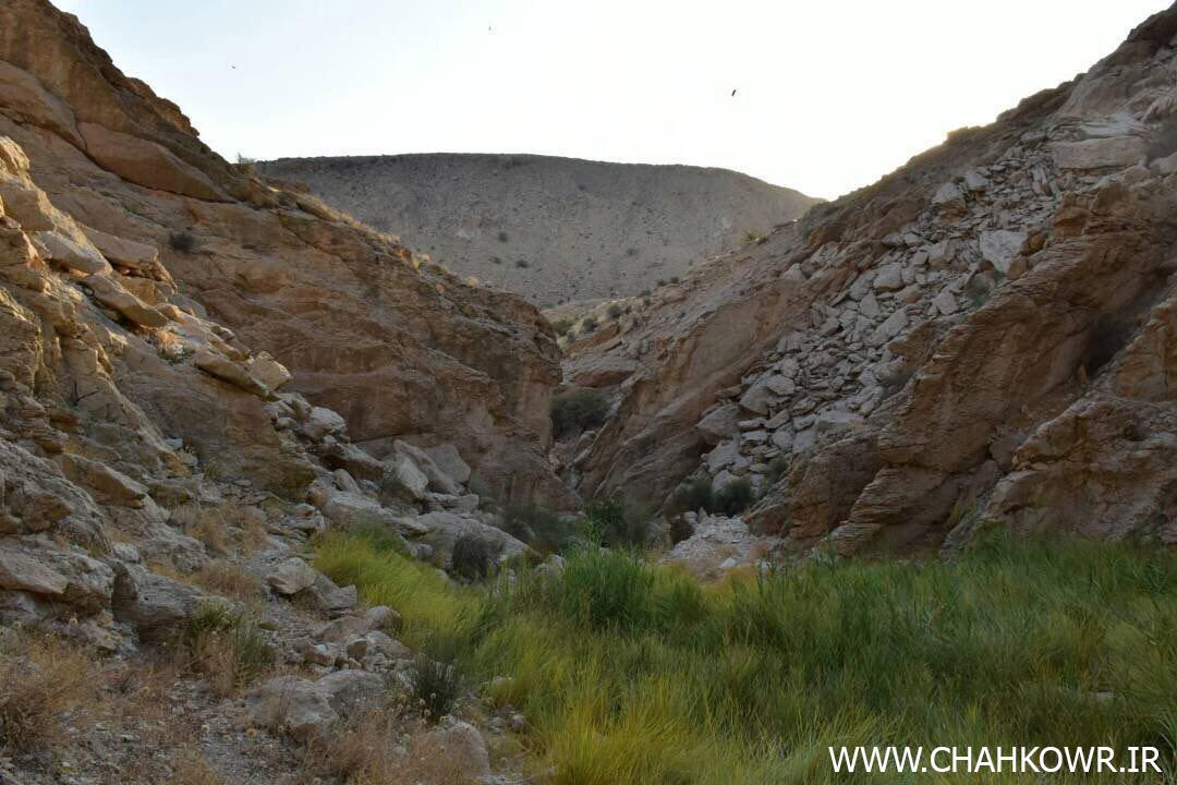 http://bayanbox.ir/view/6059912260528514570/Paksazi-Cheshmeh-Aab-KharzahreDan-5.jpg