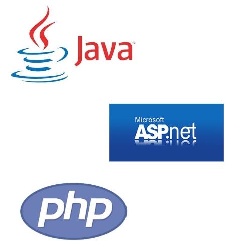 جاوا، پی اچ پی یا دات نت، پردرآمد ترین زبان برنامه نویسی کدام است؟
