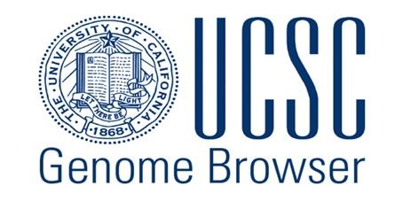 آموزش سایت UCSC: بررسی بیان ژن ها، تعیین مسیرهای سیگنالی، عملکرد مولکولی و زیستی ژن ها